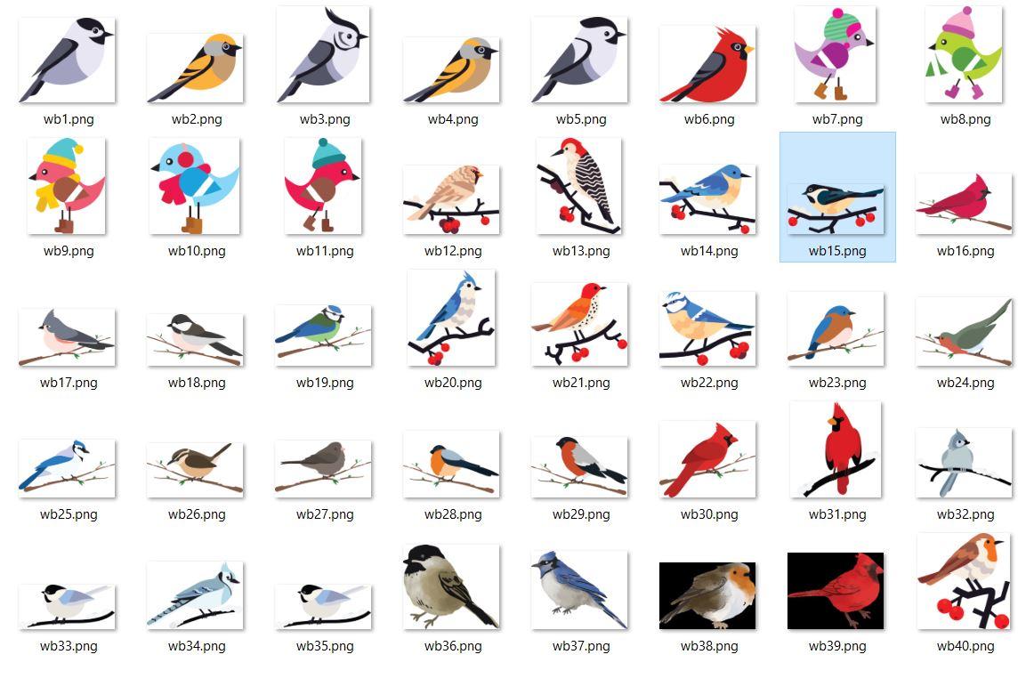 تصاویر png پرنده